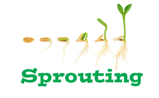 Sprouting Supplies